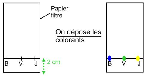 Préparation de la plaque de chromatographie
