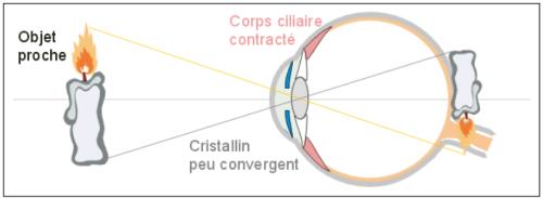 Modélisation de la vision de près