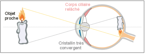 Acommodation de l'oeil