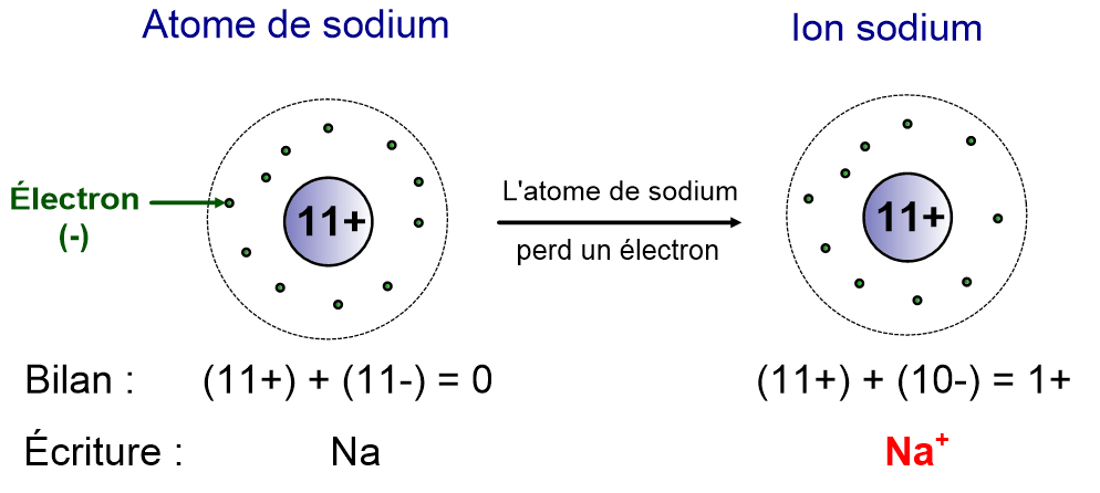 L ion sodium correspond à un atome de sodium ayant perdu 1 électron. 6bf89cb83b81